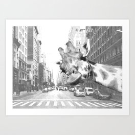 Black and White Selfie Giraffe in NYC Art Print