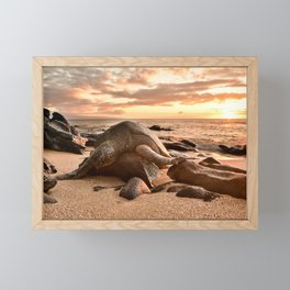 Exhausted Turtle in Maui Framed Mini Art Print