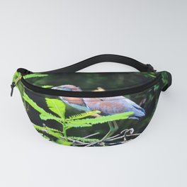 Juvenile Tricolored Heron Fanny Pack