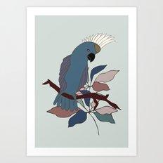 Parrot | Cockatoo Art Print