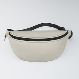 Pratt and Lambert 2019 Feather Gray 32-27 Solid Color Fanny Pack