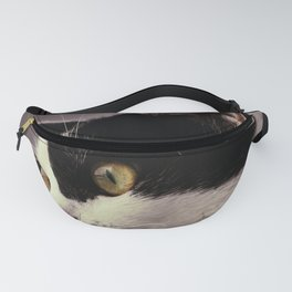 When I was young Fanny Pack