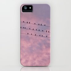 Birds on a wire Slim Case iPhone (5, 5s)