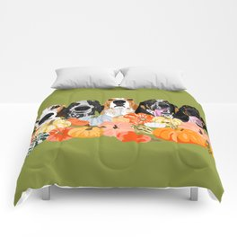 Coonhounds and Gourd Comforters