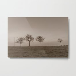 Naked trees during a foggy morning - Cove Bay, Aberdeen, Scotland Metal Print