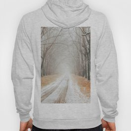 Winter on the road Hoody