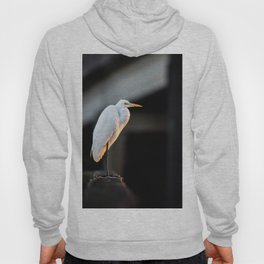 Great Egret at Sunset Hoody