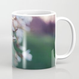 Among the Magnolias Coffee Mug