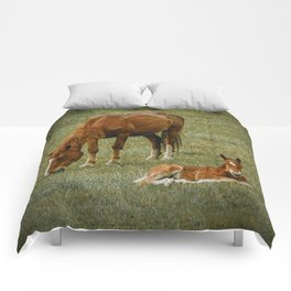 Horse And Foal Comforters