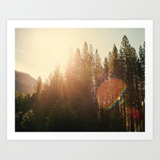 Super Flare Art Print