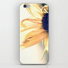 Melodious iPhone & iPod Skin