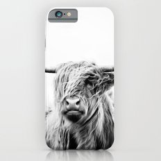 portrait of a highland cow Slim Case iPhone 6