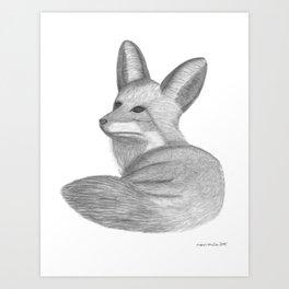 FOX I - pencil illustration Art Print