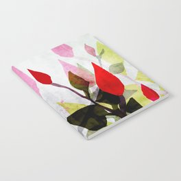 Rosebush Notebook
