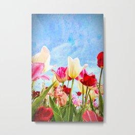 Tulip Nirvana 15 Metal Print