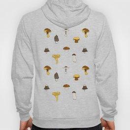 Mushroom Glaze Hoody