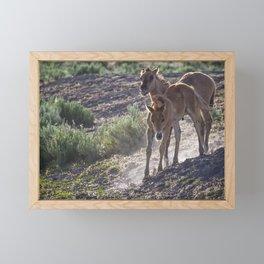The Wild Foals Framed Mini Art Print