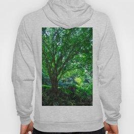 The Greenest Tree Hoody