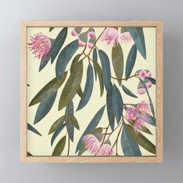 Pink eucalyptus Framed Mini Art Print