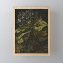 Cineraria Framed Mini Art Print