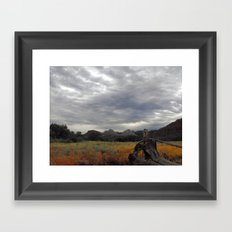 The big Picture Framed Art Print