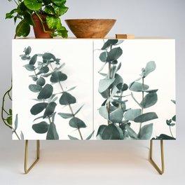 Eucalyptus Leaves Credenza
