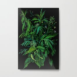 Summer Greenery, Green & Black, Floral Painting Metal Print