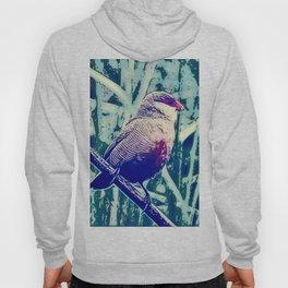 Bird Estrilda astrild Hoody