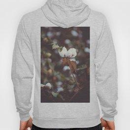 Cotton Flower 2 Hoody