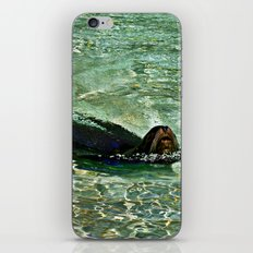 SEA LION in AQUATIC DREAMING WORLD  iPhone & iPod Skin