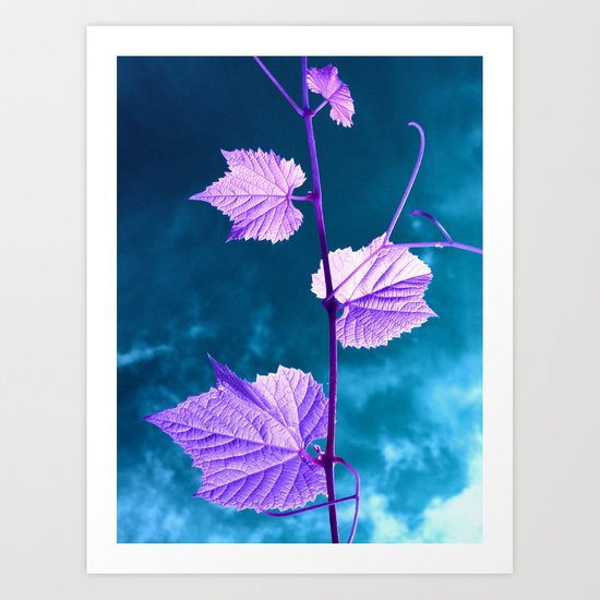 violet wine leafs II Art Print