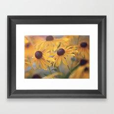 Susans Framed Art Print