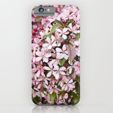 Apricot blossoms Slim Case iPhone 6s