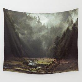 Foggy Forest Creek