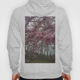New England Redbud in bloom  Hoody