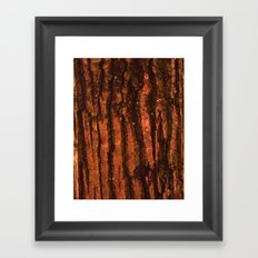 Textures - Wood Framed Art Print