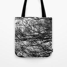 Shadow Trees Tote Bag