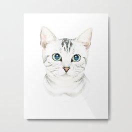 Gray Cat Metal Print