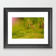 Moss germ, Alone in a green Land Framed Art Print