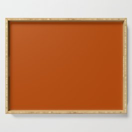 Best Seller Colors of Autumn Terracotta Orange Brown Single Solid Color - Accent Shade Hue Colour Serving Tray