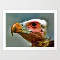Ethel The Vulture Art Print