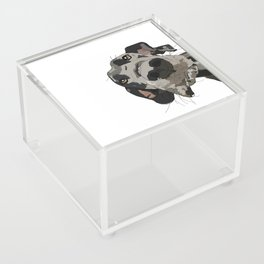 Great Dane Acrylic Box