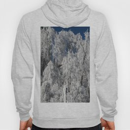 frosted trees Hoody