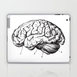 Human Brain Sideview Anatomy Detailed Illustration Laptop & iPad Skin