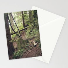 A walk in the Redwoods Stationery Cards