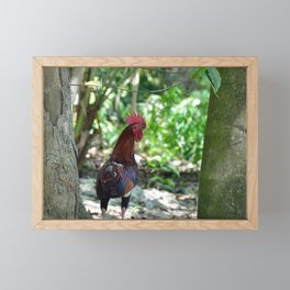 Tropical Beach Photo Rooster Framed Mini Art Print