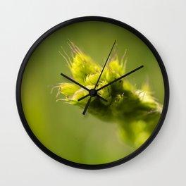 rye on green Wall Clock