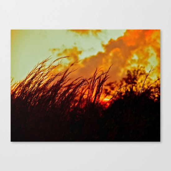Sunset Brings the Wind Canvas Print