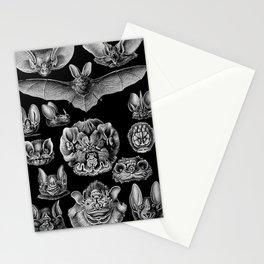 1904 Haeckel Chiroptera Stationery Cards