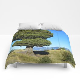 Big tree and patagonian landscape Comforters